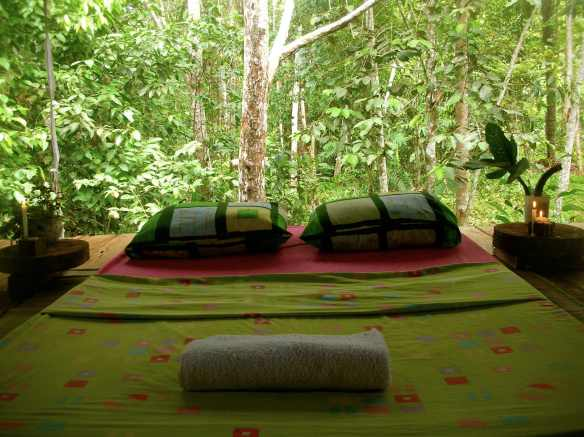 """Open space for sleeping; with mosquito nets, and the forest.."""